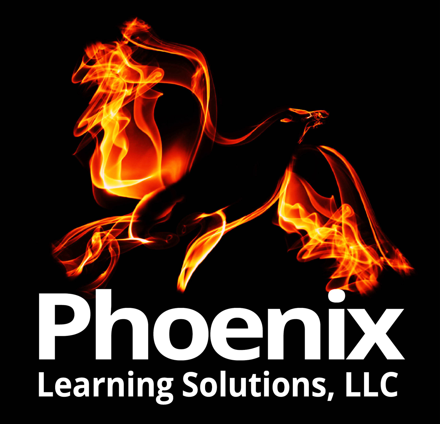 Phoenix Learning Solutions, LLC