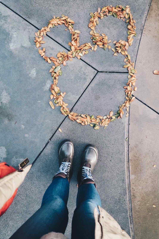 mickey-ears-leaves.jpg