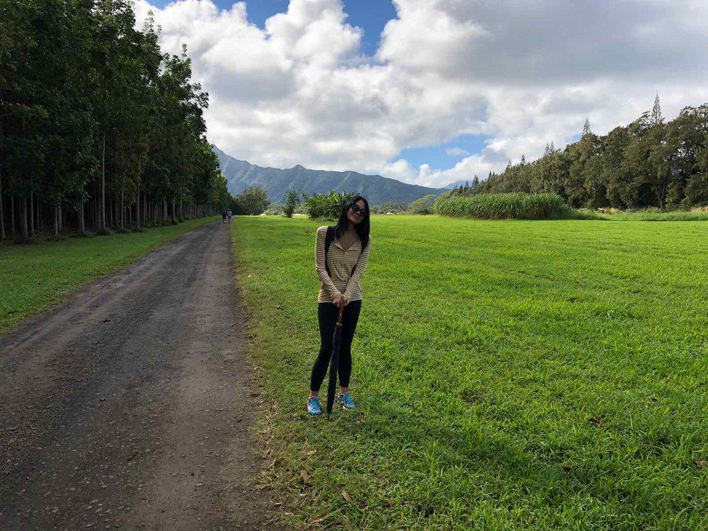 wai-koa-loop-trail-kauai.jpg