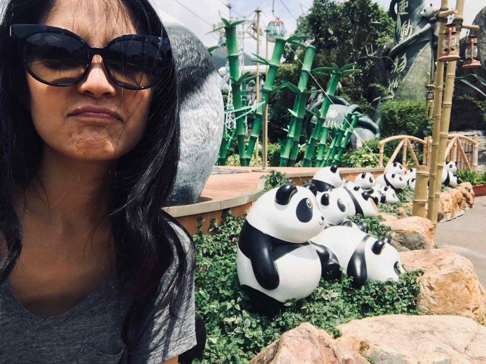 ocean-park-hong-kong-panda.jpg