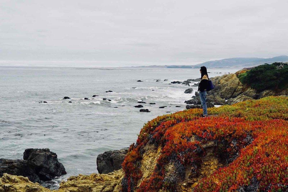 Coast-Walk-Cambria-CA.jpg