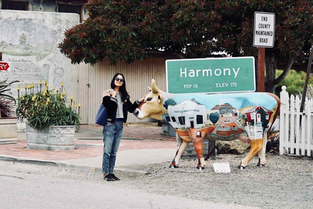 Harmony-CA-10.jpg