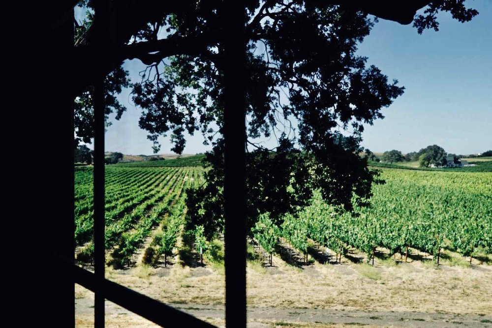 summerwood-winery-room-4.jpg