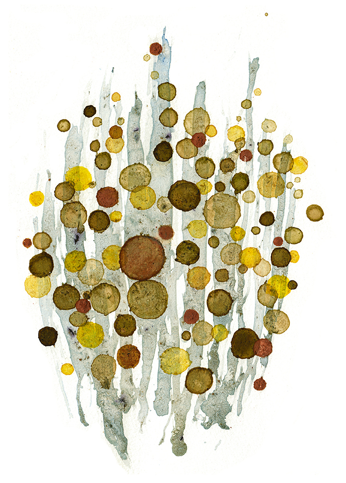 "N38°19'35"", W122°20'36""  Weeds, minerals, dirt, berries, dandelions / 13 in x 10 in"