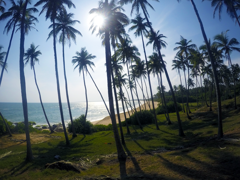 4-Tangalle--(16).png