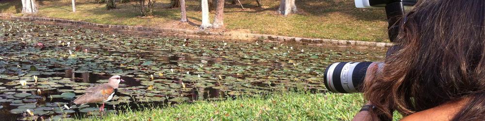 Prática no Jardim Botânico / SP