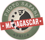 Photo Safari MADAGASCAR.png