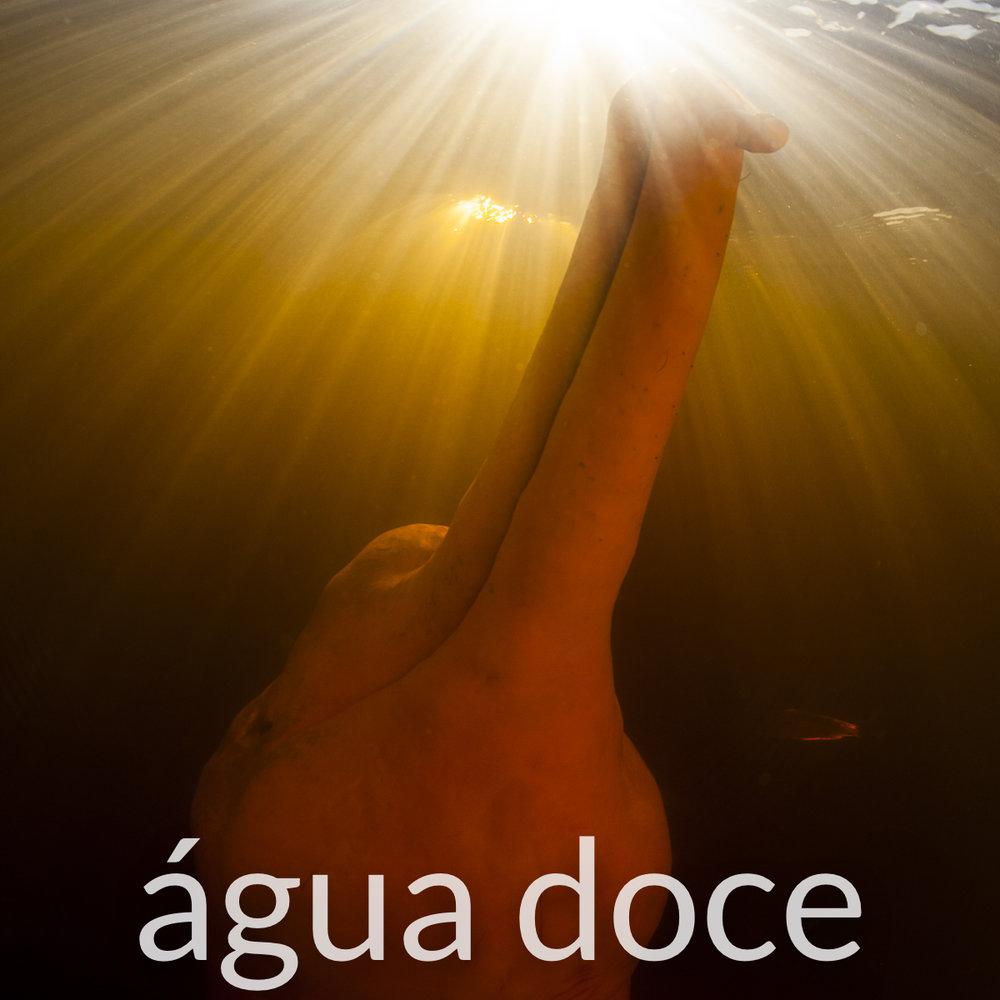 Fotografia subaquatica agua doce.jpg