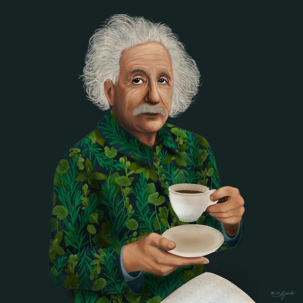 Einstein_midgoods.png
