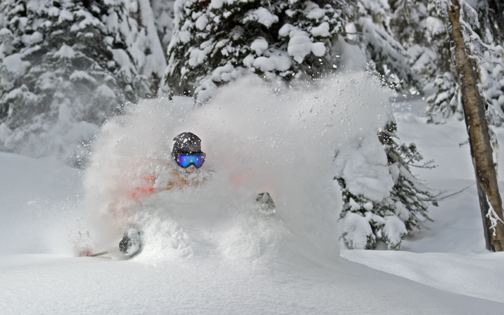 Ski guide in deep powder in Canada