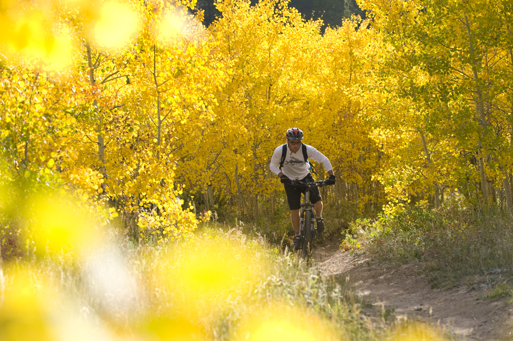 Mountain biker and yellow leaves
