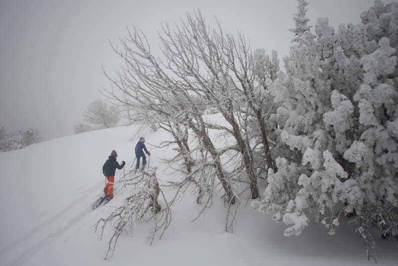 Pick the right terrain and a beautiful day, and kids go nuts over ski touring.