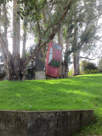 Lynched Volkswagon  (1966). Rene di Rosa created this red car installation hanging from the boughs of a eucalyptus tree in back of the residence.