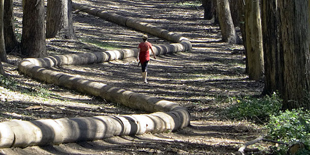 """Wood Line"" (2011), by Andy Goldsworthy .  Made from eucalyptus branches laid out in a sloping, sinuous curve through a eucalyptus grove in San Francisco's Presidio. Source: http://www.for-site.org/project/goldsworthy-in-the-presidio-wood-line/"