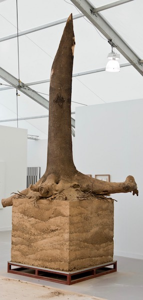 """Corporal Term"" (2014), by Kun-Yong Lee. Stripped tree trunk with its roots embedded in a cube of dirt. Gallery Hyundai's booth, Frieze New York. Photo (cropped) by George Etheredge for The New York Times. Source: https://www.nytimes.com/2018/05/03/arts/design/review-frieze-new-york.html"