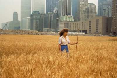 """Wheatfield—a Confrontation: Battery Park Landfill, Downtown Manhattan"" (1982), by Agnes Denes. Source: observer.com on widewalls.ch/environmental-artists."