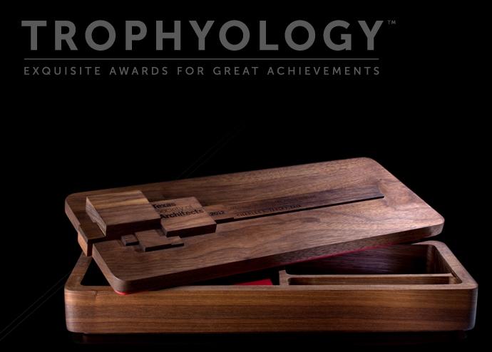 2013_1030_Matt Fajkus MF Architecture Trophyology Cover.jpg