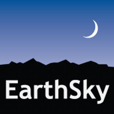 2013_1231 Matt Fajkus MF Architecture Earth Sky Logo.jpg