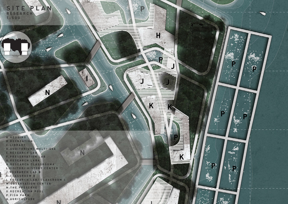 Univeristy Island Terra Innova Matt Fajkus Architecture MF MFx16_6.jpg