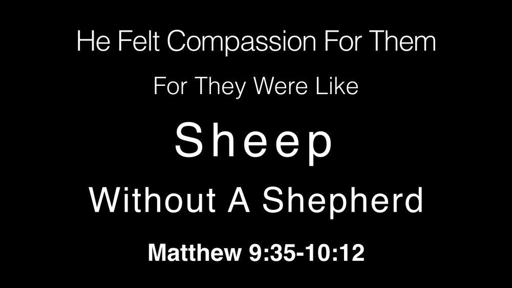 Like Sheep Without A Shepherd WIDE.001.jpeg