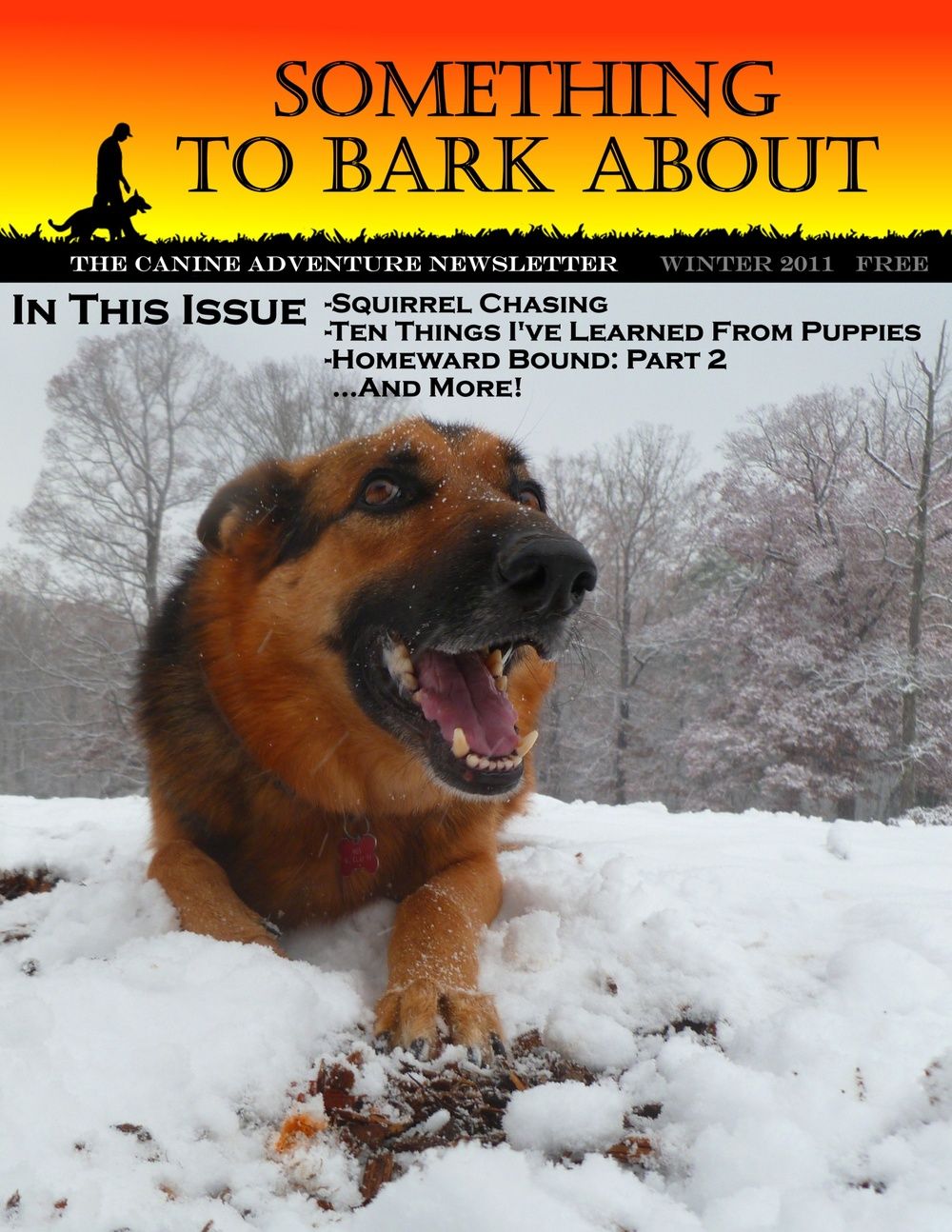 CoverPageWinter2011.jpg