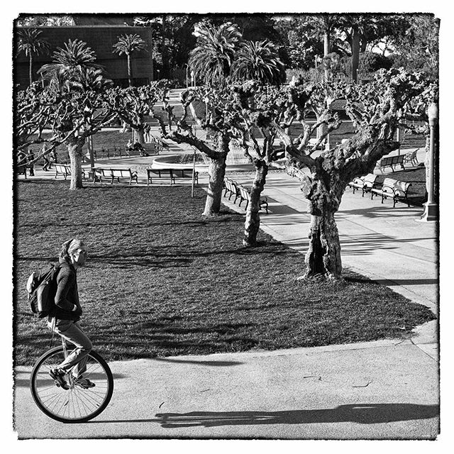 I always wanted to learn to ride one of those, but I'd need a coordination transplant.  #ig_street #best_streetview #streetphotography #streets #streetshot #streetportraits #StreetLife_Award #tv_streetlife #bnw_planet #bnw #bw #flakphoto_repost #flakphoto  #sanfrancisco #goldengatepark #cycling #unicycle #biking#ig_street #best_streetview #streetphotography #streets #streetshot #streetportraits #StreetLife_Award #tv_streetlife #bnw_planet #bnw #bw  #ae_bnw_c70