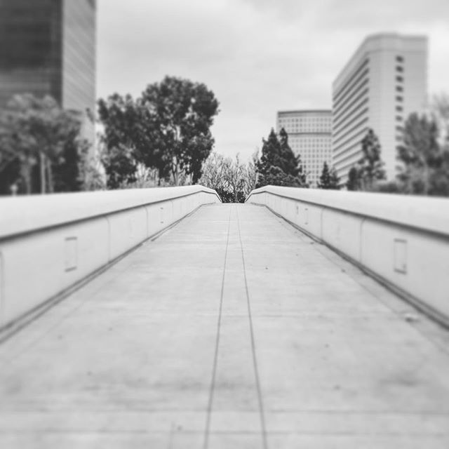 Quiet overcast day near South Coast Plaza.  #fineart_photobw #noir #monochromatic #monotone #bwstyleoftheday #socalwinter #oc #southcoastplaza #costamesa #g7 #lumix