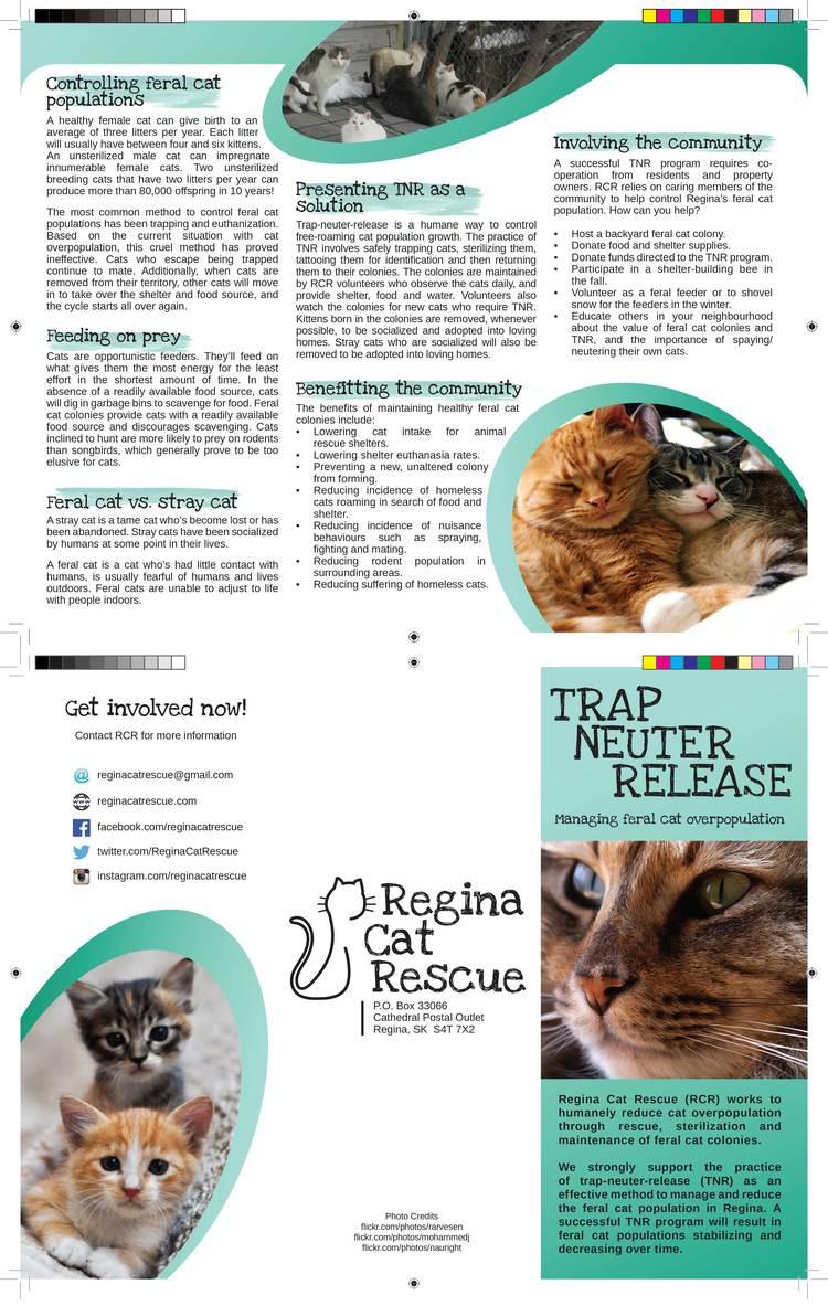 munications — Regina Cat Rescue