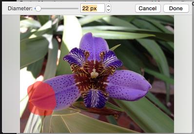 Screenshot 2015-03-05 16.37.17.png