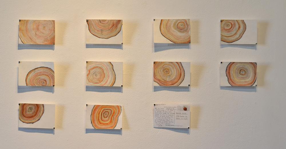 tree ring postcards