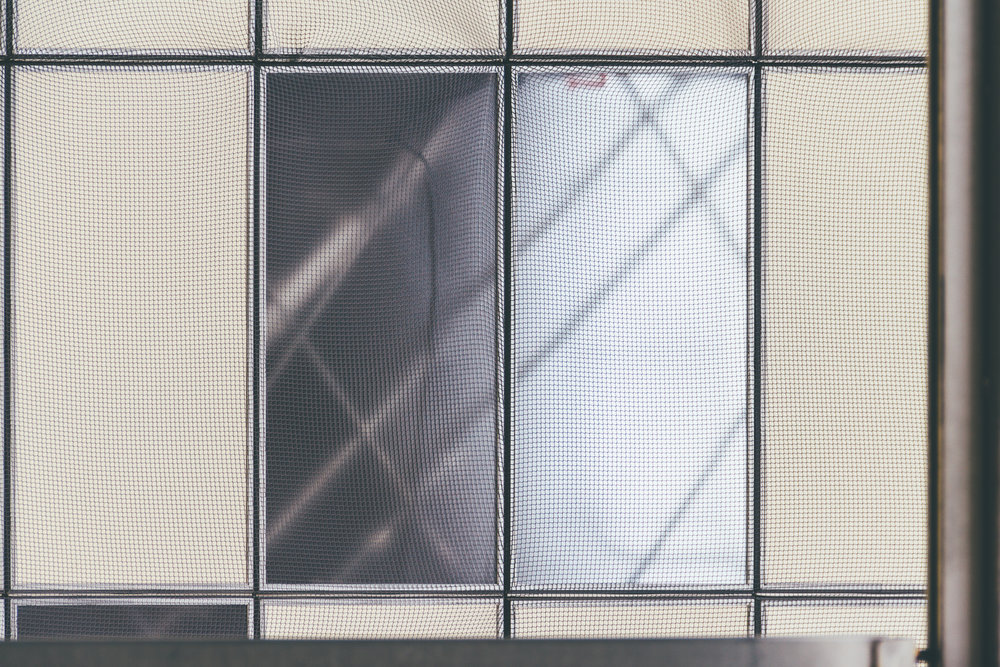 Behind Glass #8984 (Mintato)