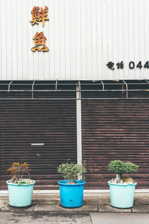 B-Side #8993 (Kawasaki)