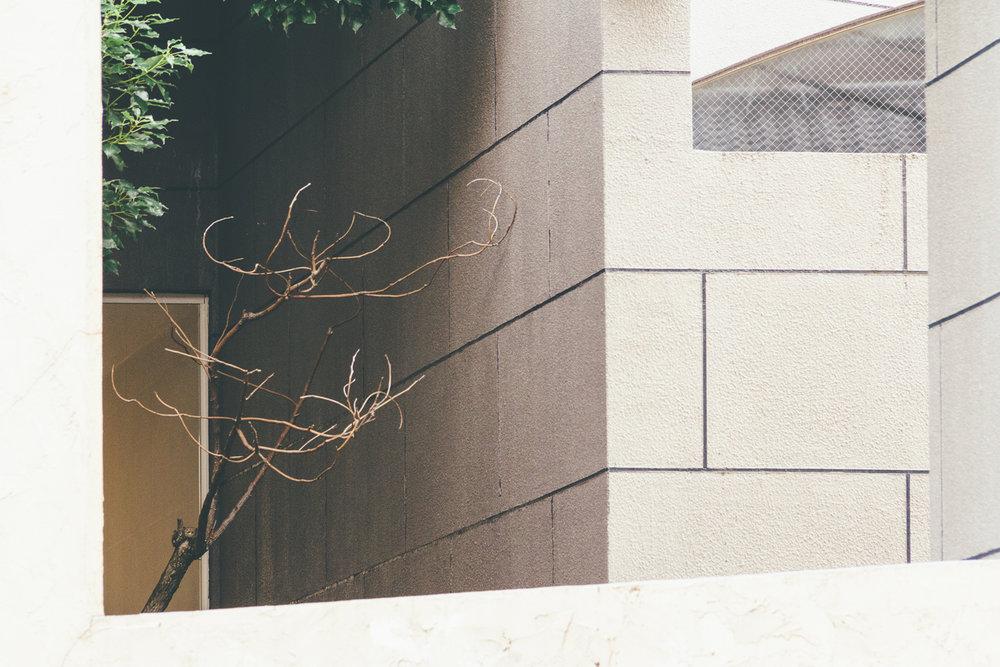 B-Side #9084 (Setagaya)