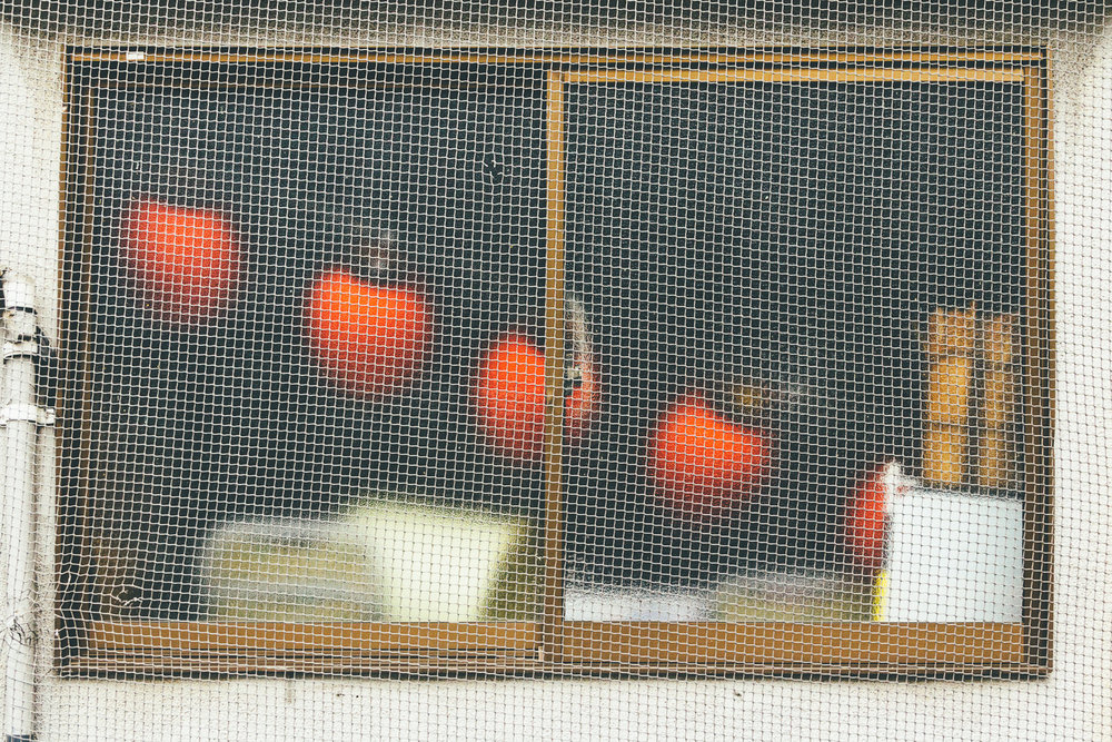 Behind Glass #9531 (Minato)