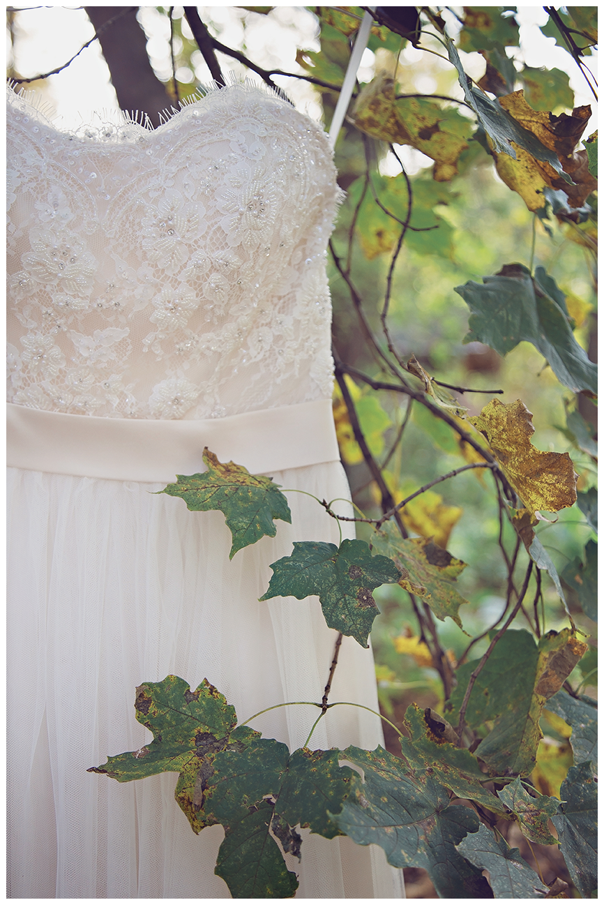 Mankato WeddinMankato Wedding Photographer | Minneopa Falls | The Silhouette | Intuition Weddings by ID Photography