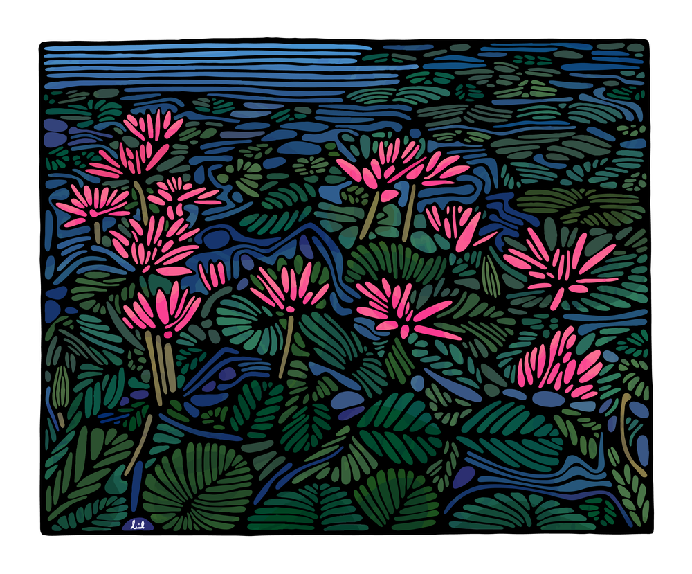 Pink Flower Pond 2017