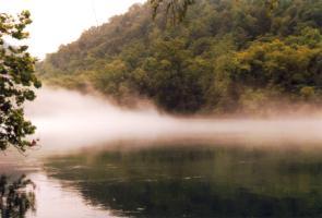 Fog-www2.jpg