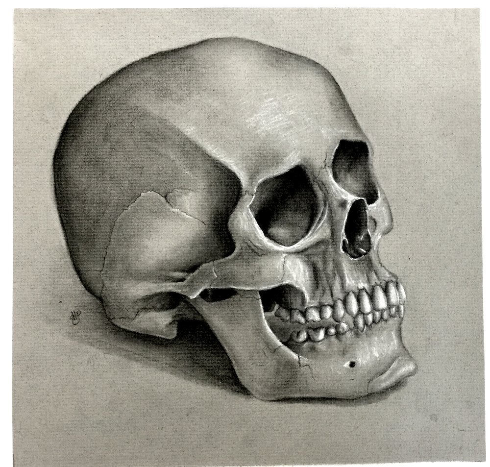"Hayden Schroader's first place drawing, ""Skull."" Click the picture above to expand."