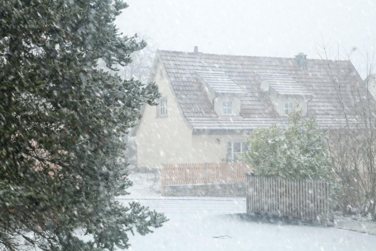 p366, take 13: Snow