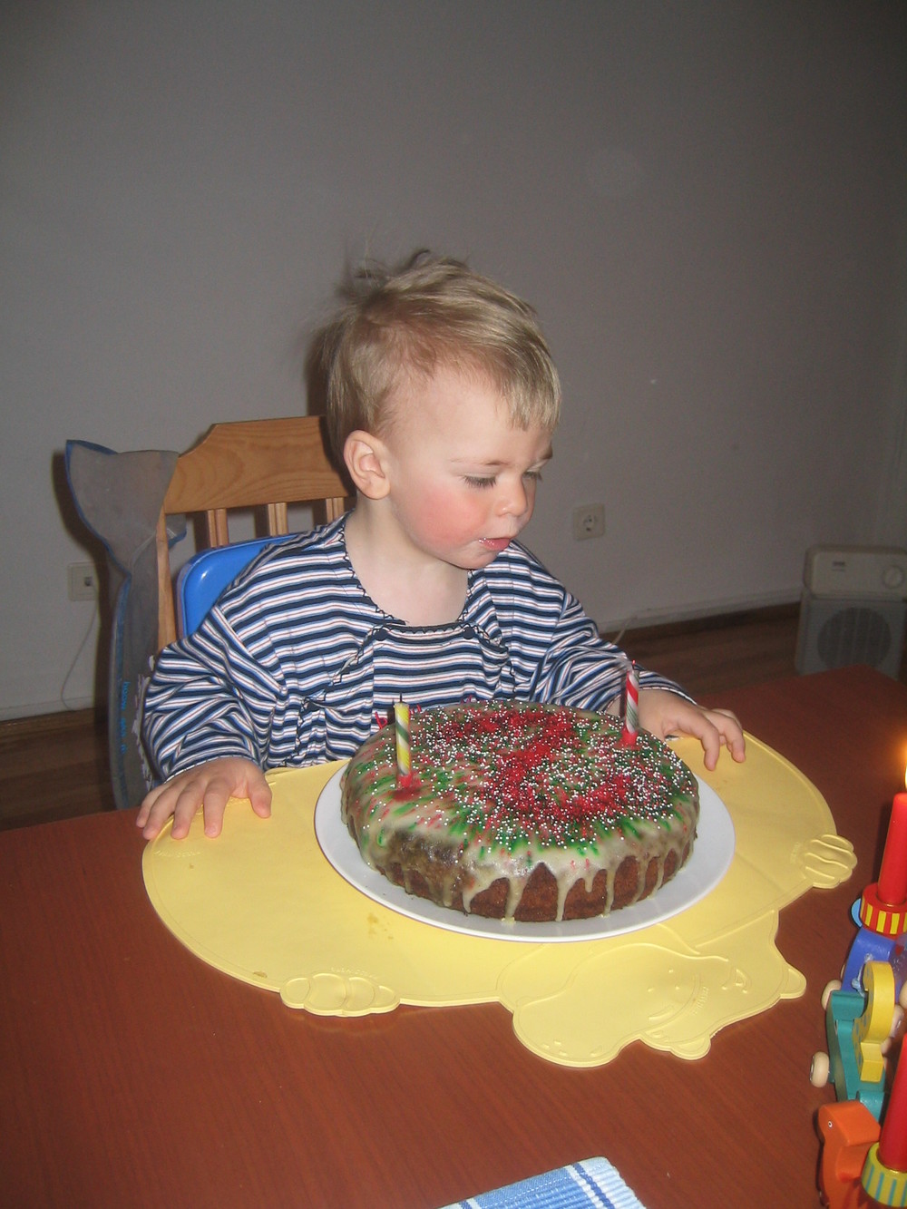 Second Birthday in Romania, 2004