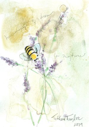 Lavender, Humming of Bees