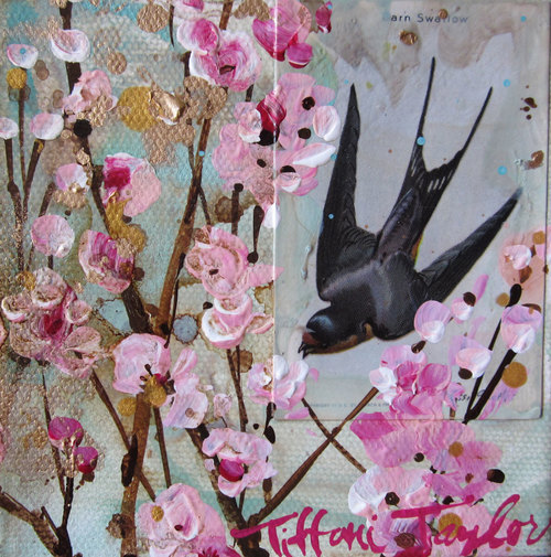 Swallow:  Pink Blooms