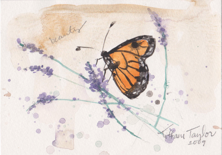 Monarch with Lavender