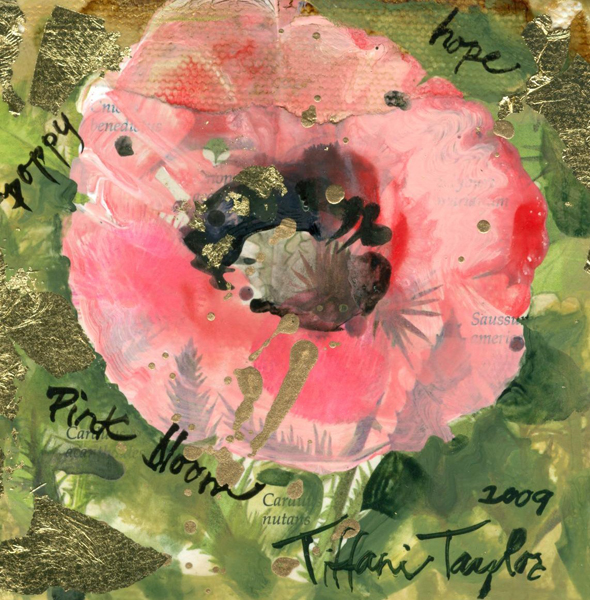 Vintage Wildflower Paper:  Pink Poppy
