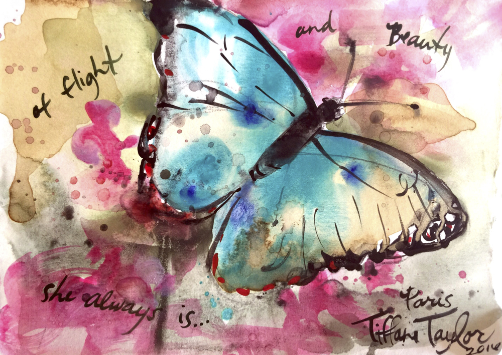 Butterfly: Of light and beauty she always is...