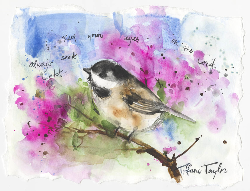Chickadee: Always Seek Light...