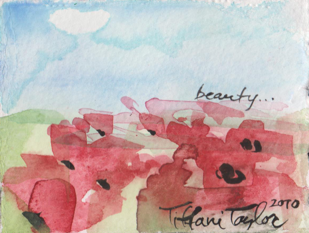 Poppy Study: Beauty