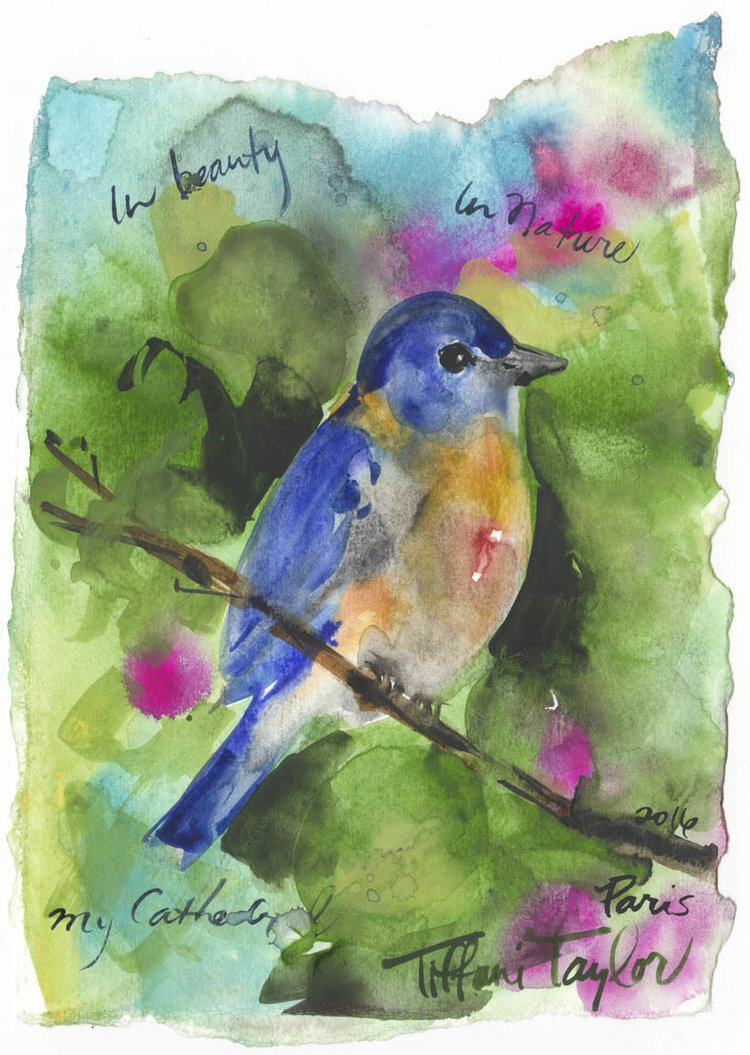 "Bluebird: In Beauty, In Nature... 6""x 7 1/2"""
