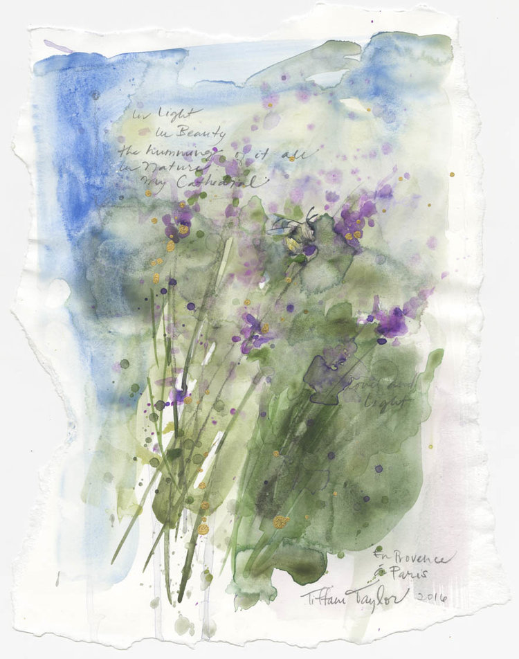 "Bee and Lavender: In Light, In Beauty... 11""x 7 1/2"""