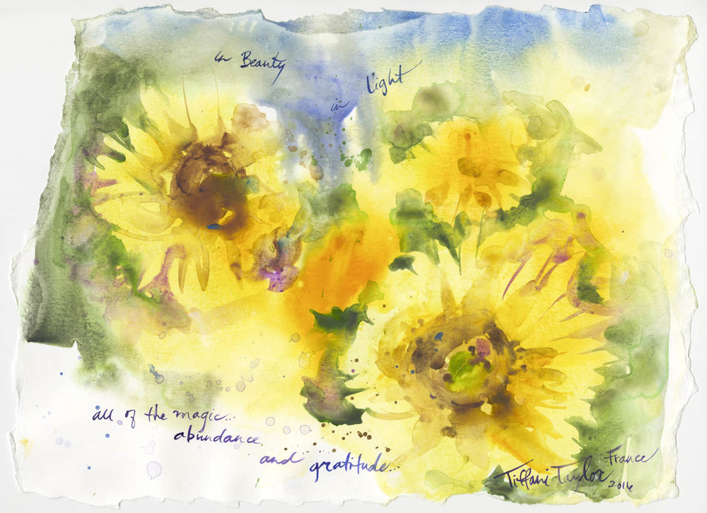 "Sunflowers: All of the Love and Beauty...11""x 16"""